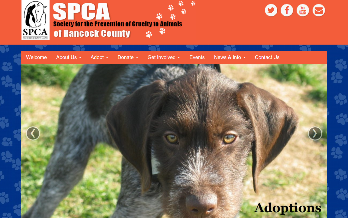 SPCA of Hancock County, ME